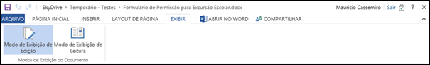 Guia Exibir Word Web App