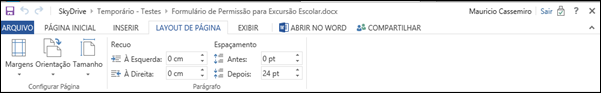 Guia Layout de Pagina Word Web App