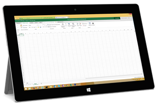Excel Web App 2014 noSurface